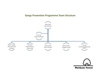 Gangs Prevention Programme Team Structure
