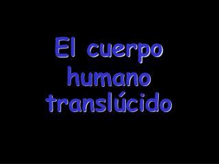 El cuerpo humano transl�cido