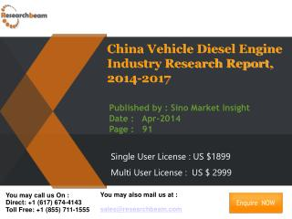 China Vehicle Diesel Engine Market Size, Share 2014-2017