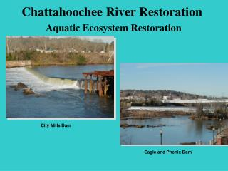 Chattahoochee River Restoration Aquatic Ecosystem Restoration