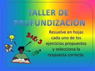 TALLER DE  PROFUNDIZACIÓN