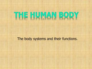 The body systems and their functions.