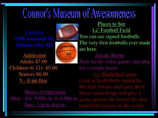 Connor's Museum of Awesomeness