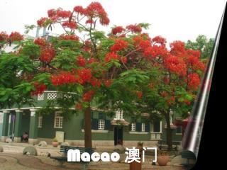 Macao  澳门