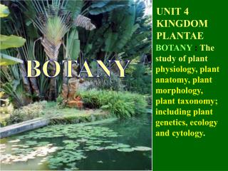 UNIT 4 KINGDOM PLANTAE