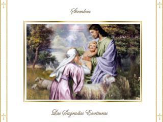 14  « Yo  soy el buen Pastor :  conozco  a mis  ovejas , y mis ovejas  me conocen a mí