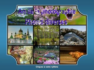 Art de la photographie