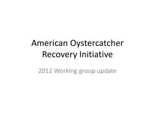 American Oystercatcher Recovery Initiative