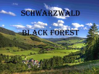 Schwarzwald Black  forest