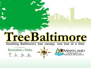 Doubling  Baltimore�s  tree  canopy   one  tree  at  a  time
