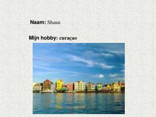 Naam:  Shaun