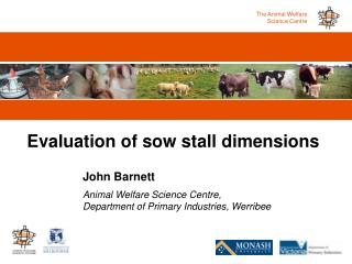 Evaluation of sow stall dimensions