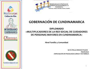GOBERNACI�N DE CUNDINAMARCA  DIPLOMADO