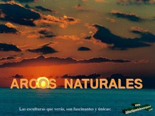 ARCOS  NATURALES