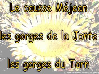 Le causse Méjean les gorges de la Jonte les gorges du Tarn