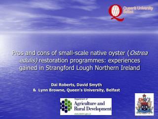 Dai Roberts, David Smyth &  Lynn Browne, Queen's University, Belfast