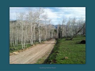 Aspen_Hills_-_1213