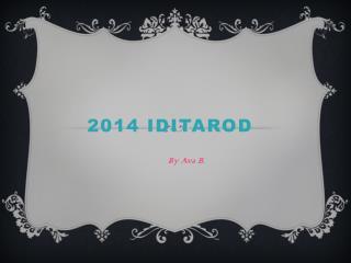2014  Iditarod