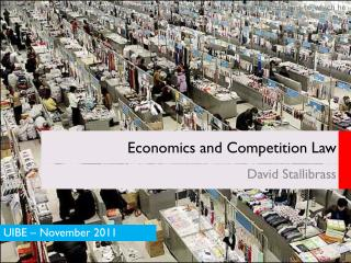 Economics and Competition Law