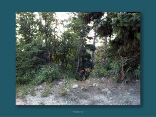 Aspen_Hills_-__1018