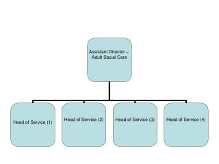 FOI 2100 Adult Social Care Structure