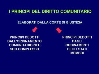 I PRINCIPI DEL DIRITTO COMUNITARIO