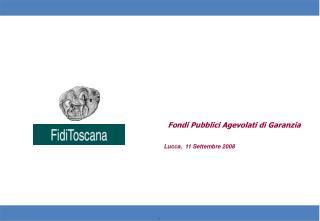 Fondi Pubblici Agevolati di Garanzia Lucca,  11 Settembre 2008