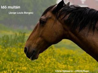 Id ő  mult á n (Jorge Louis Borges)