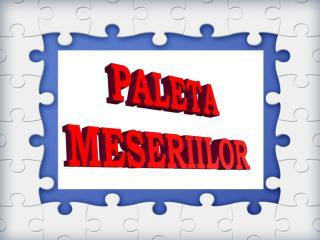 PALETA MESERIILOR