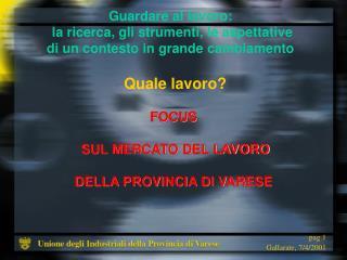 FOCUS  SUL MERCATO DEL LAVORO DELLA PROVINCIA DI VARESE