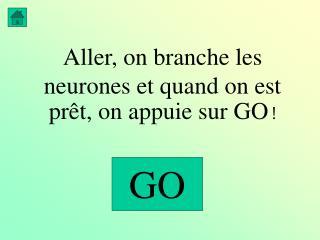 Aller, on branche les neurones et quand on est  prêt,  on appuie sur GO  !