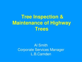 Tree Inspection & Maintenance of Highway Trees