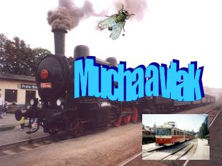 Mucha a vlak