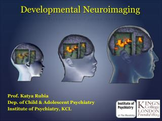 Developmental  Neuroimaging