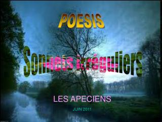Sonnets irr�guliers