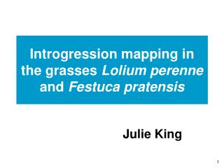 Introgression mapping in the grasses  Lolium perenne  and  Festuca pratensis