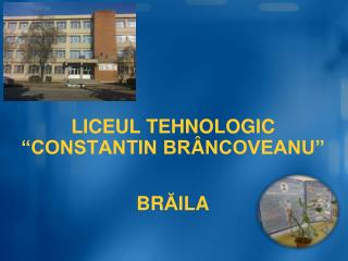 """LICEUL TEHNOLOGIC """"CONSTANTIN BR Â NCOVEANU"""""""