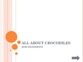 ALL ABOUT CROCODILES
