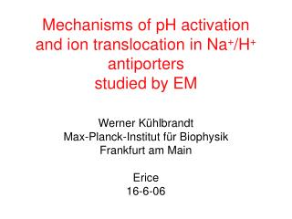 Mechanisms of pH activation and ion translocation in Na