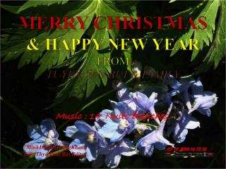 Merry Christmas & Happy new year fROM Tuyen Van Bui & Family
