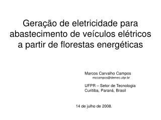 Geração de eletricidade para abastecimento de veículos elétricos a partir de florestas energéticas