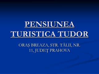 PENSIUNEA TURISTICA TUDOR