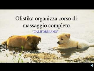 Olistika organizza corso di massaggio completo