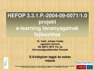 HEFOP 3.3.1.P.-2004-09-0071/1.0 projekt  e-learning tananyagainak fejlesztése