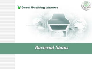 Bacterial Stains