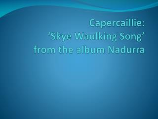 Capercaillie:   Skye Waulking Song   from the album Nadurra