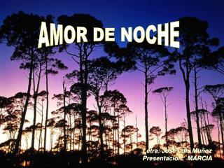 AMOR DE NOCHE