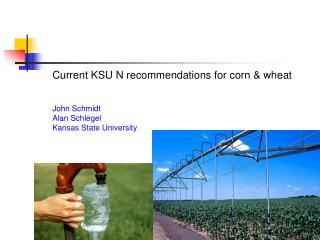 Current KSU N recommendations for corn & wheat John Schmidt Alan Schlegel Kansas State University