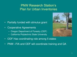 PNW Research Station s Plan for Urban Inventories