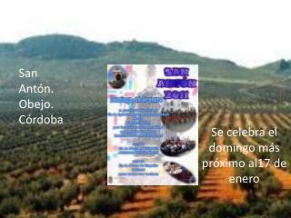 Fiestas y tradiciones relacionadas con la recogida de la aceituna